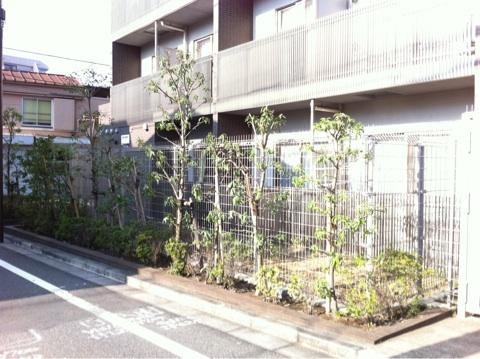 マンションなどの植栽管理